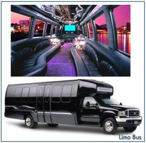 NH coach limo exterior and interior view
