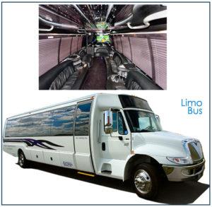 Medium Coaches (2 sizes) 15-18 and 18-24 Passengers